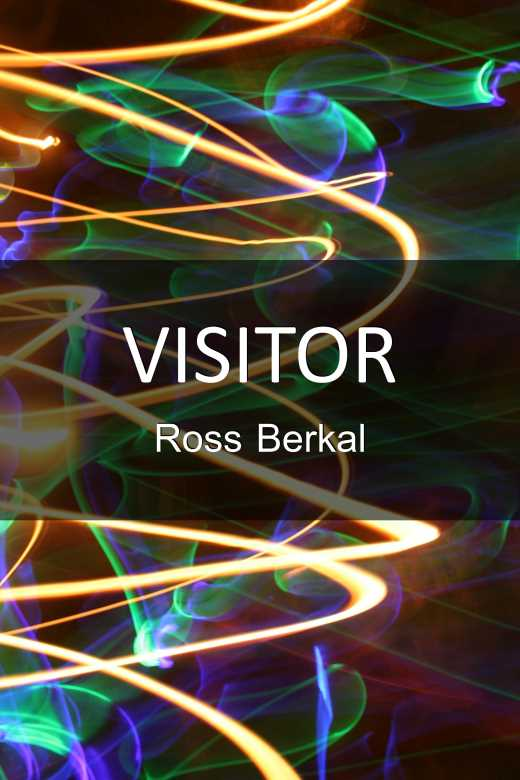 Visitor - Ross Berkal