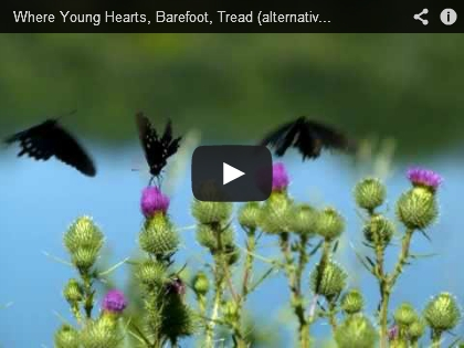 Where Young Hearts, Barefoot, Tread - Ross Berkal - Screenshot