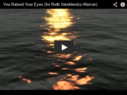 You Raised Your Eyes - Ross Berkal - Screenshot